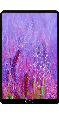 coque-pour-kindle-fire-7-pouces-version-2012-pourpre-abstraite-herbe-dorge-by-katho-menden
