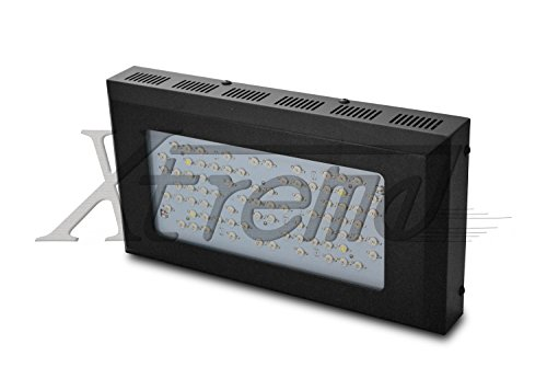 Xtreme Work® Full Spectrum 240W (80*3W) Led Grow Light For Indoor Plant Growing Plants And Garden Greenhouse With Ir