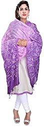 Femezone Women 's Dupatta (Purple, 240 cm)