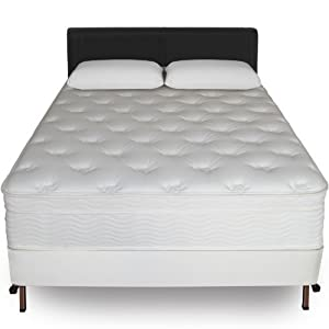 Sleep Master 13-Inch Euro Top Spring Mattress and Bi-Fold Box Spring Set, Queen