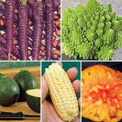 Eat Your Weird Veggies Collection - Park Seed Vegetable Seeds - Buy Eat Your Weird Veggies Collection - Park Seed Vegetable Seeds - Purchase Eat Your Weird Veggies Collection - Park Seed Vegetable Seeds (Vegetable Plant Seeds, Home & Garden,Categories,Patio Lawn & Garden,Plants & Planting,Outdoor Plants,Vegetables)