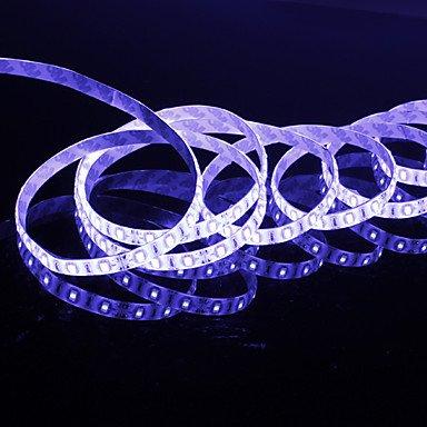 5M 6W 300X5630 Smd White Light Led Strip Lamp (Dc 12V)