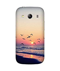 Birds And Sunset Samsung Galaxy Ace 4 Case