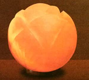 Himalayan Salt Lamps Evolution : Evolution Himalayan Lotus Crystal Salt Lamp - - Amazon.com