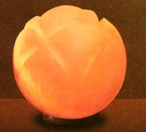 Evolution Himalayan Lotus Crystal Salt Lamp - - Amazon.com