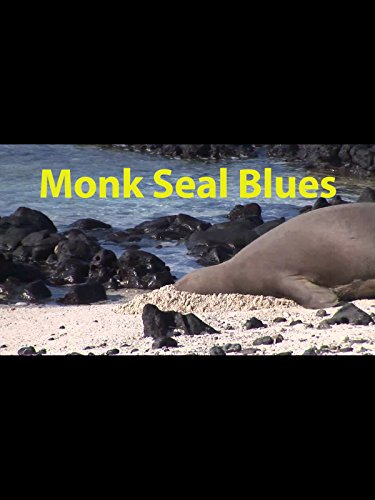 Monk Seal Blues