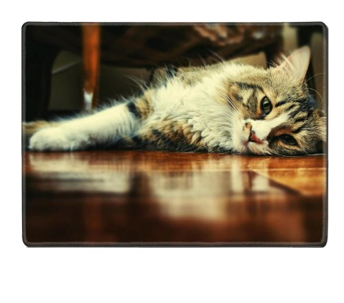 Floor Wood Indoors Cats Animals Placemat Pads Customized Made To Order Support Ready 15 6/8 Inch (400Mm) X 11 13/16 Inch (300Mm) X 1/8 Inch (3Mm) High Quality Eco Friendly Cloth With Neoprene Rubber Msd Place Mouse Pad Desktop Mousepad Laptop Mousepads Co front-567791