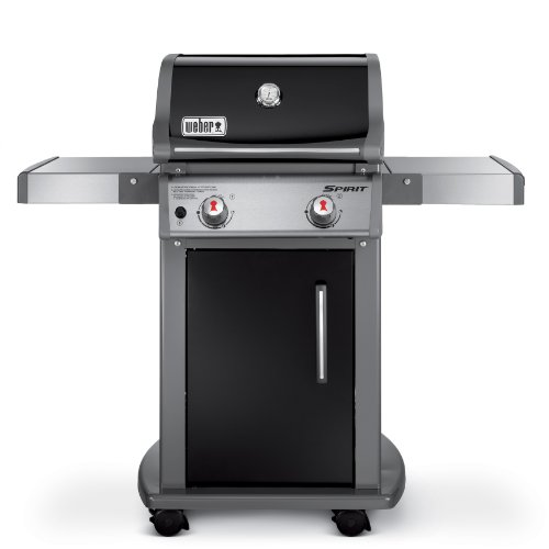 Weber 46110001 Spirit E210 Liquid Propane Gas Grill, Black (Best Weber Bbq compare prices)
