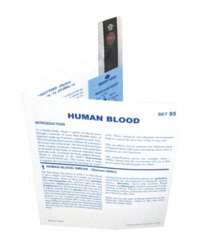 Nta Human Blood Photomicrograph Microslide