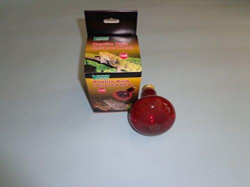 100 Watt Reptile Red Spot Heat Bulb (Bearded Dragon Heat Lamp Bulb compare prices)