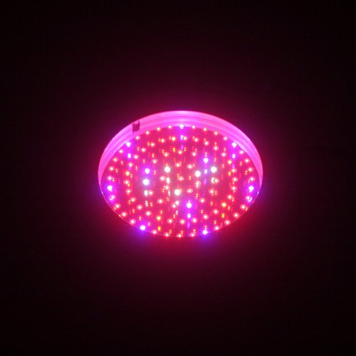 Ledwholesalers 2506Rbow Blue/Red/Orange/White 90 X 1 Watt Led High Power Round Grow Light