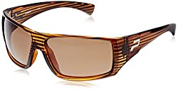 Polaroid Square Sunglasses (Brown) (P8247B)