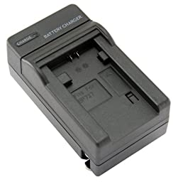STK\'s Canon BP-727 Battery Charger - for BP-709, BP-718, BP-727 batteries and Canon Vixia HF R300, HF M500, HF R30, HF M52, HF R32, HF R40, HF R42, HF R400, Canon Legria HF M52, HF M56, HF M506, HF R38, HF R36, CG-700