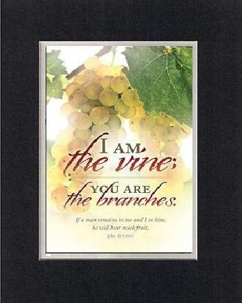 For General Inspiration - I Am The Vine; You Are The Branches . . . 8 X 10 Inches Biblical/Religious Verses Set In Double Beveled Matting (Black On White) - A Timeless And Priceless Poetry Keepsake Collection