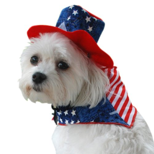 Patriotic Bandana and Hat Costume - XSmall, 8-Inches