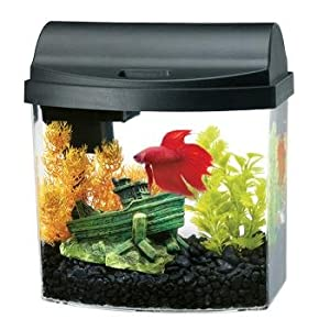 Aqueon Double Sided Black Mini Bow Desktop Aquarium Kit