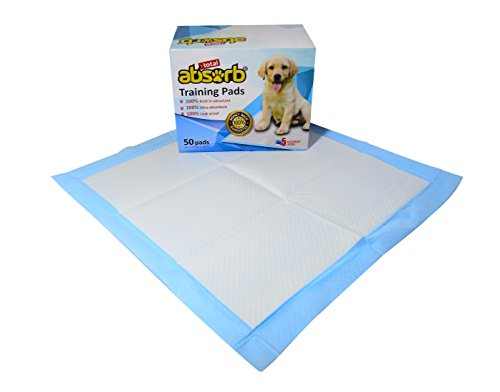 Absorbant Training Pads For Large Dogs