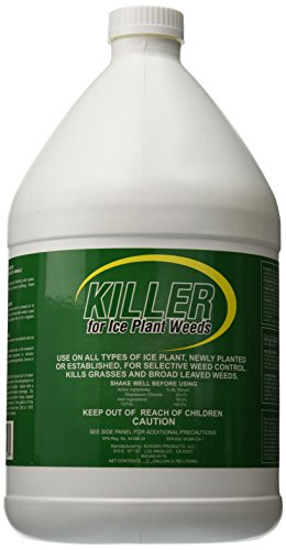 killer-100047322-pest-and-disease-control-for-ice-plant-weeds-1-gallon