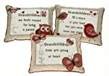 Grandchildren Are Gods Reward For Being A Parent Embroidred Cushion