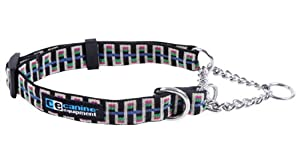 Canine Equipment Ultimate 3/4-Inch Martingale Dog Collar, Small 10 to 16-Inch, Black Stairs