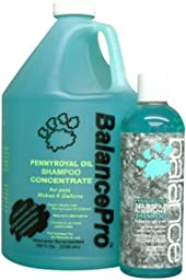 Kenic Pennyroyal Pet Shampoo, 16-Ounce