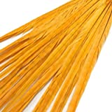 Maslin 100pcs/lot Natural&Real Pheasant Tails Feather Size 50-55cm Long Ringneck Pheasant Plumes for Carnival Decorations 14 Colors - (Color: Gold Yellow) (Color: gold yellow)