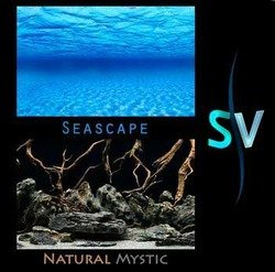 Seascape Double Sided Aquarium Background - 24