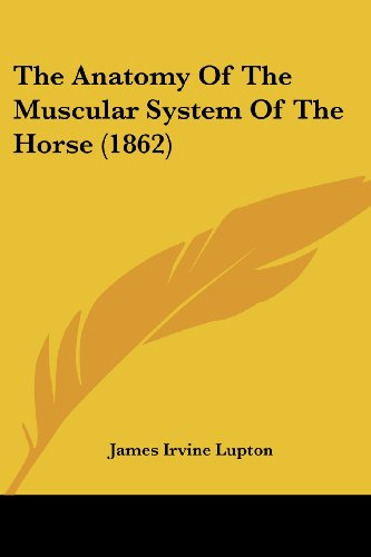 The Anatomy of the Muscular System of the Horse (1862)