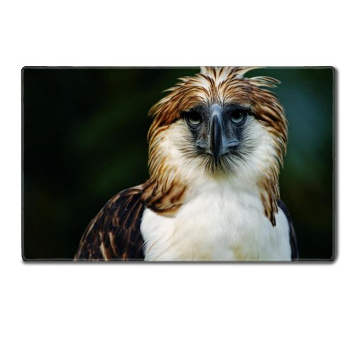 Eagle Philippines Bird Head Feathers Beak Carnivore Table Mats Customized Made To Order Support Ready 24 Inch (610Mm) X 14 15/16 Inch (380Mm) X 1/8 Inch (4Mm) High Quality Eco Friendly Cloth With Neoprene Rubber Liil Deskmat Desktop Mousepad Laptop Mousep