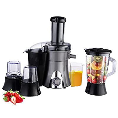 Costzon 4in1 Electric Blender Smoothie Maker Juicer Grinder Chopper Mixer Food Processor