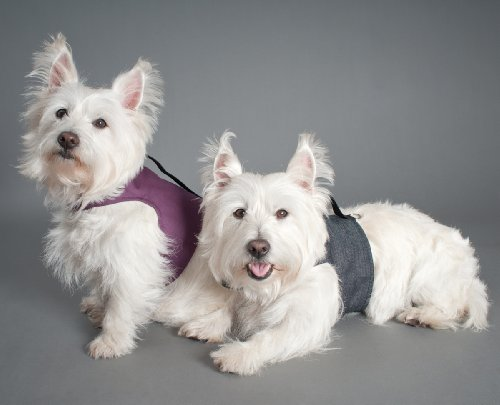 c0a90053866 The Features YAP Classic Dog Harness Wrap Reversible Purple Denim L -