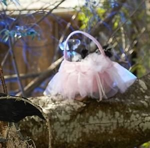 NWT/N (Pottery Barn Halloween Costumes)