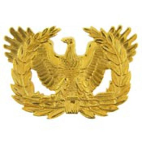 U.S. Army Warrant Officer Candidate Pin 2 1/8
