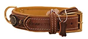 Dean and Tyler DEAN'S LEGEND, Dog Collar with Brown Padding and Brass Hardware, Brown, Size 26-Inch by 1-1/2-Inch, Fits Neck 24-Inch to 28-Inch