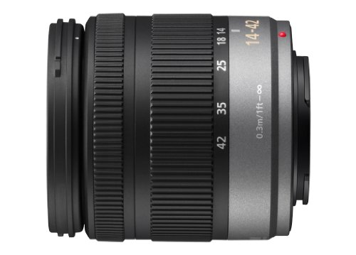 Panasonic Micro Four Thirds 14-42mm Zoom Lens (35mm Equivalent 28-84mm)