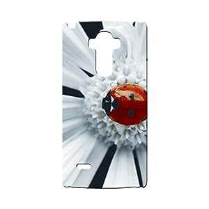 G-STAR Designer Printed Back case cover for LG G4 Stylus - G4529