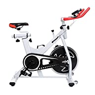 Ancheer Indoor Cycling Bike SP-3900 U…