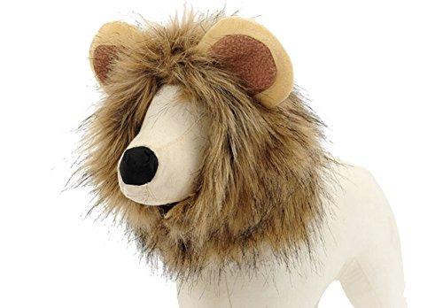 BETOP (Cat Lion Halloween Costumes)