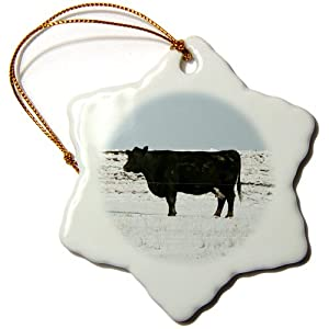 3dRose LLC orn_20853_1 Black Cow in the Snow Snowflake Porcelain Hanging Ornament, 3-Inch