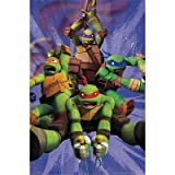 (22x34) Teenage Mutant Ninja Turtles TMNT - Team TV Poster
