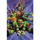 (22x34) Teenage Mutant Ninja Turtles TMNT - Team TV Poster