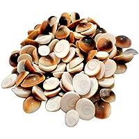 Ankita Gemstones Set Of 100 Pcs Gomti Chakra Lot 5mm To15mm Sizes Gomti Chakra