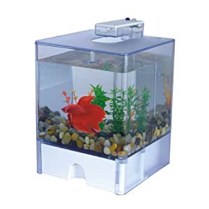 Aqua cube betta aquarium 0 8 gallon betta for Fish tank decorations amazon