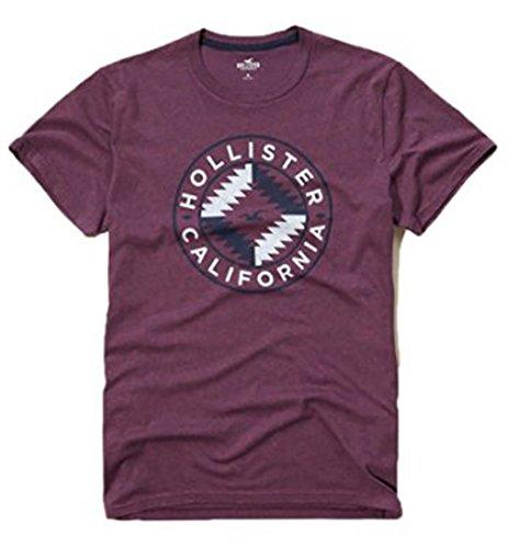 hollister-para-hombre-graphic-logo-t-shirt-multicolor-burgundy-1954-small