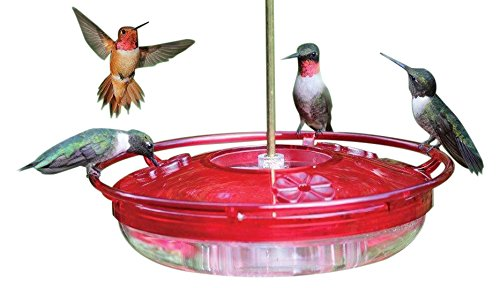 coles-wild-bird-products-hummer-high-rise