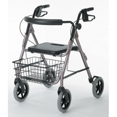Envoy 480 Deluxe Aluminum Rollator princess posey and the perfect present