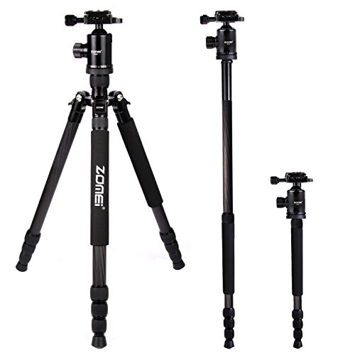 Zomei-Portable-Carbon-Fiber-Camera-Tripod-With-Ball-Head-Pocket-Z818C