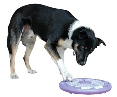 Nina Ottosson Dog Twister Activity Toy
