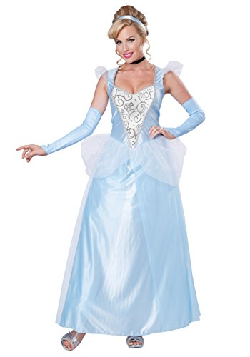 California Costumes Women's Classic Cinderella Fairytale Princess Long