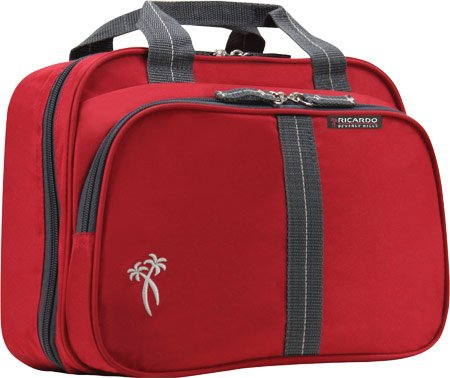 ricardo-beverly-hills-luggage-essentials-universal-travel-organizer